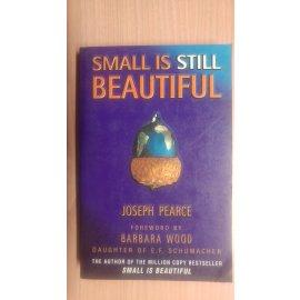 Small is Still Beautiful